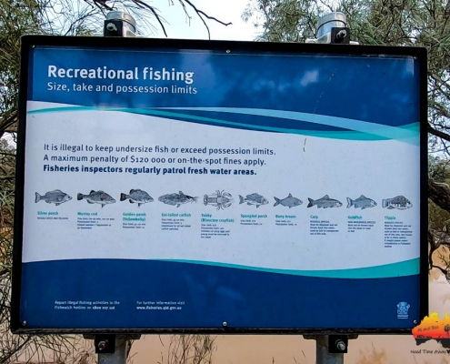 Fish found in the Paroo River, Eulo