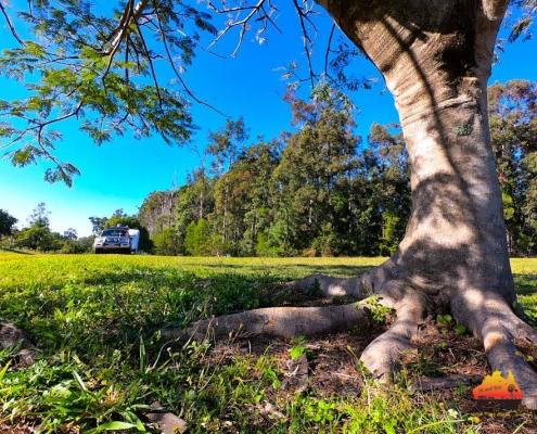 Wovi Grove Farm Camping