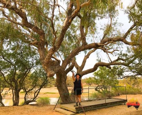 Dig Tree, Dig Tree Reserve